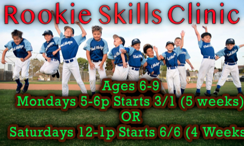 rookie skills 3_21