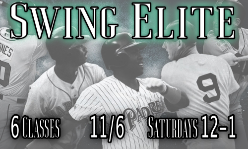 Swing Elite 11_2022